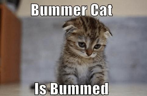 Don't be a Bummer