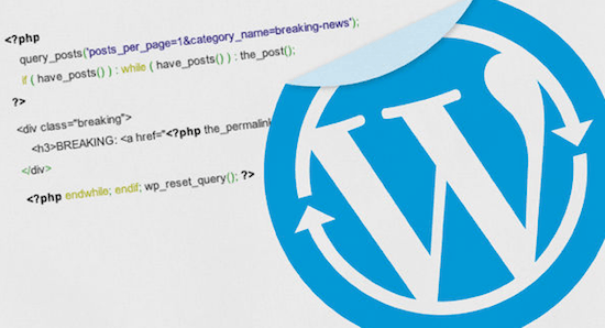 WordPress Loops