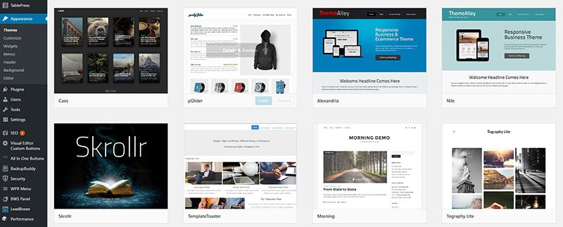 wordpress themes marketplace