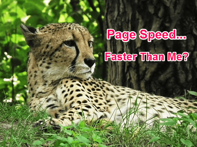 cheetah-page-speed