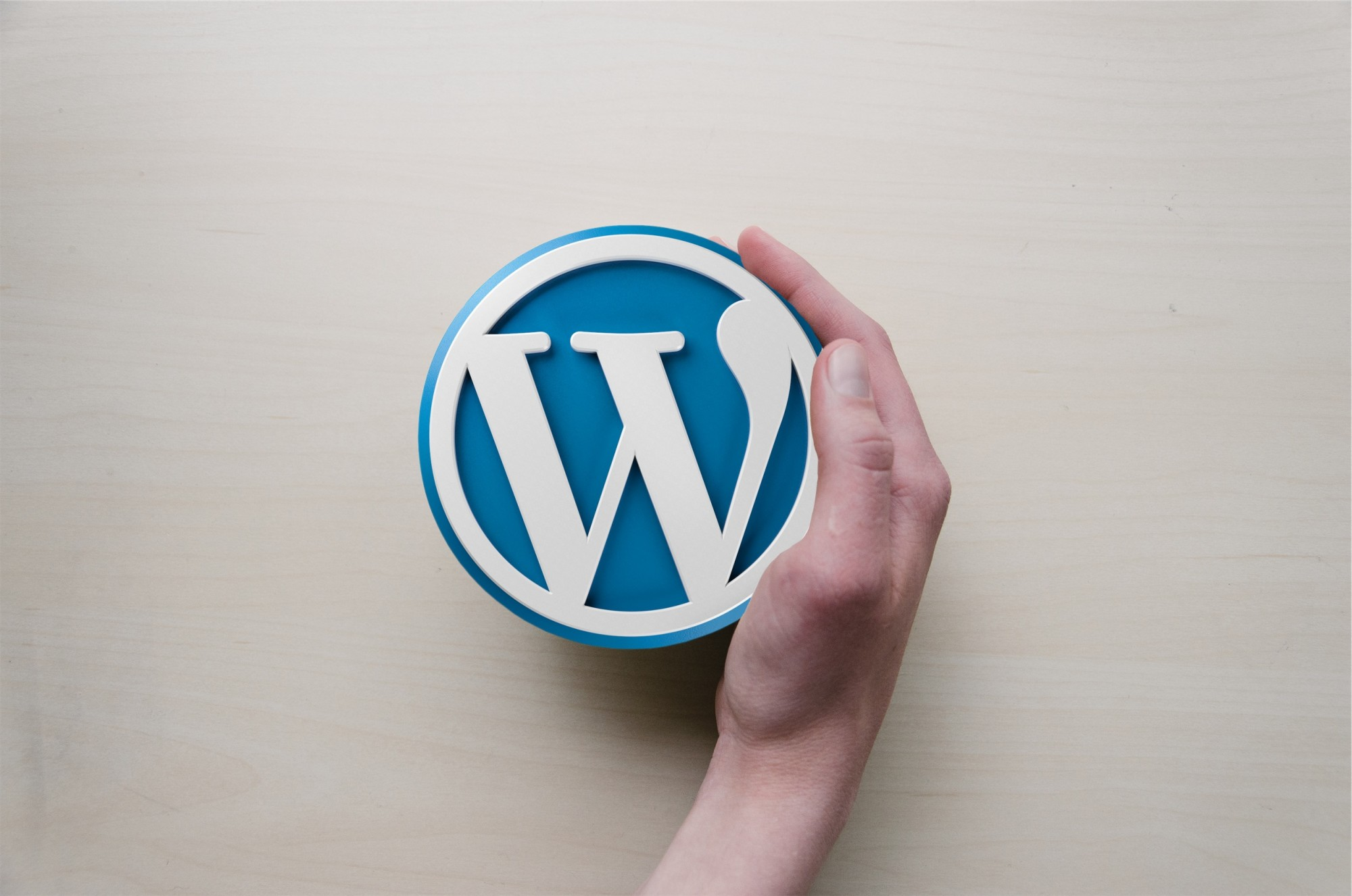 person holding wordpress logo